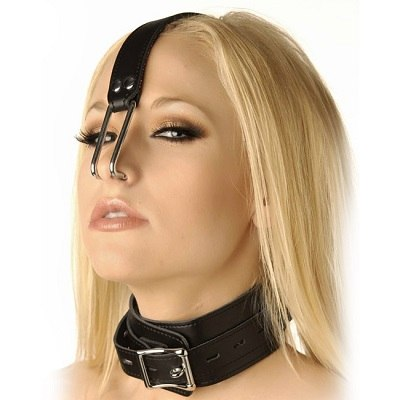 Kink Industries Collar With Nose Hooks 1